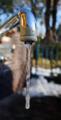 凍った蛇口(わが家)-1-18.02