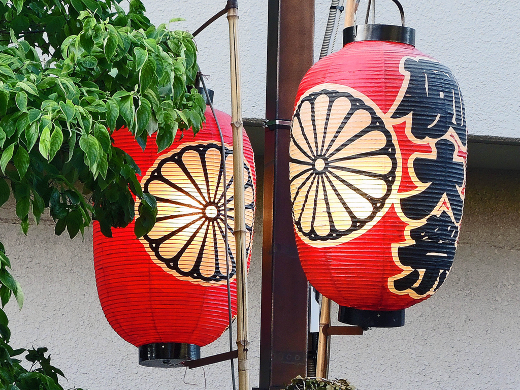 f:id:sashimi-fish1:20180509164542j:image:w150:left