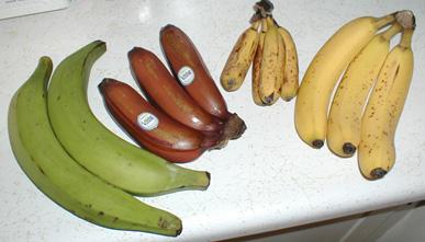 バナナ-2-