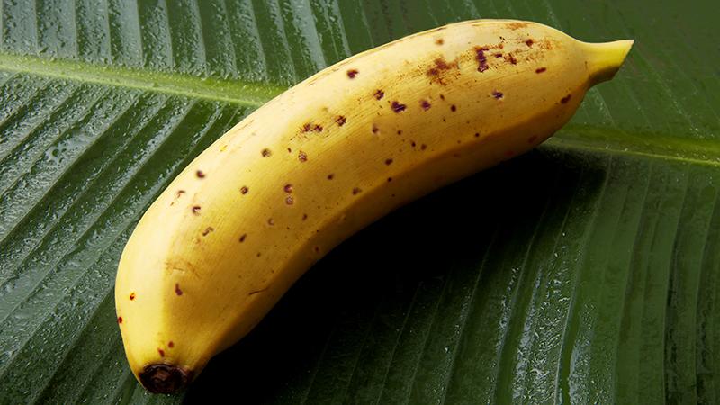 バナナ-1-