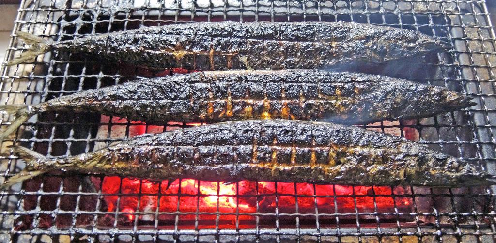 f:id:sashimi-fish1:20180929171451j:image:w190:left