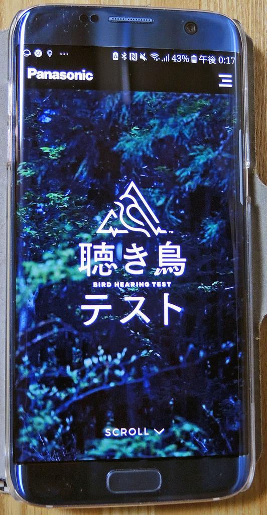 f:id:sashimi-fish1:20181006134029j:image:w70:left