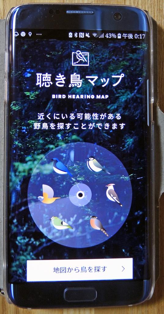 f:id:sashimi-fish1:20181006134109j:image:w70:left