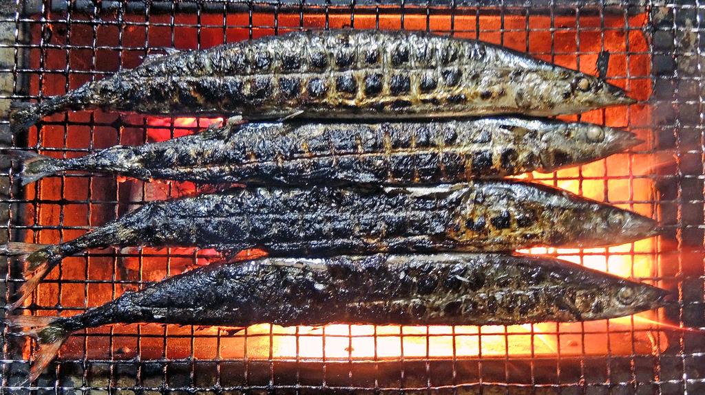 f:id:sashimi-fish1:20181007100100j:image:w130:left