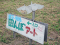田んぼアート(相馬市)-2-18.07