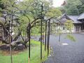 瑞巌寺(松島町)-5-18.09