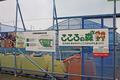 南浜、復興公園(石巻市)-5-18.09