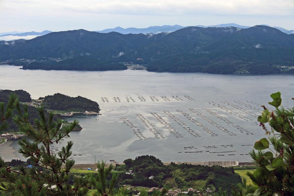 箱根山からの眺望(陸前高田市)-2-18.08