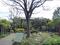 ねむの木の庭(品川区)-4-19.05