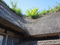 のだ塩工房(野田村)-2-18.08
