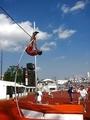 1964東京オリンピック(3)