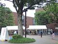 東京都美術館「クリムト展」(上野)-5-19.07