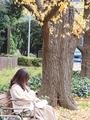 神宮外苑(新宿区)-1-20.01