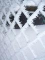フェンスの氷柱
