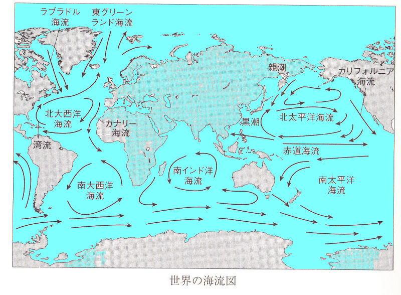 f:id:sashimi-fish1:20200921102617j:image:w220:right