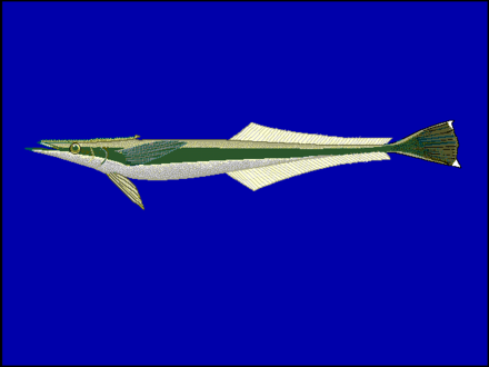 f:id:sashimi-fish1:20201029105839p:image:w220:right
