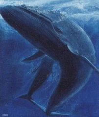 f:id:sashimi-fish1:20210130110936j:image:w180:right