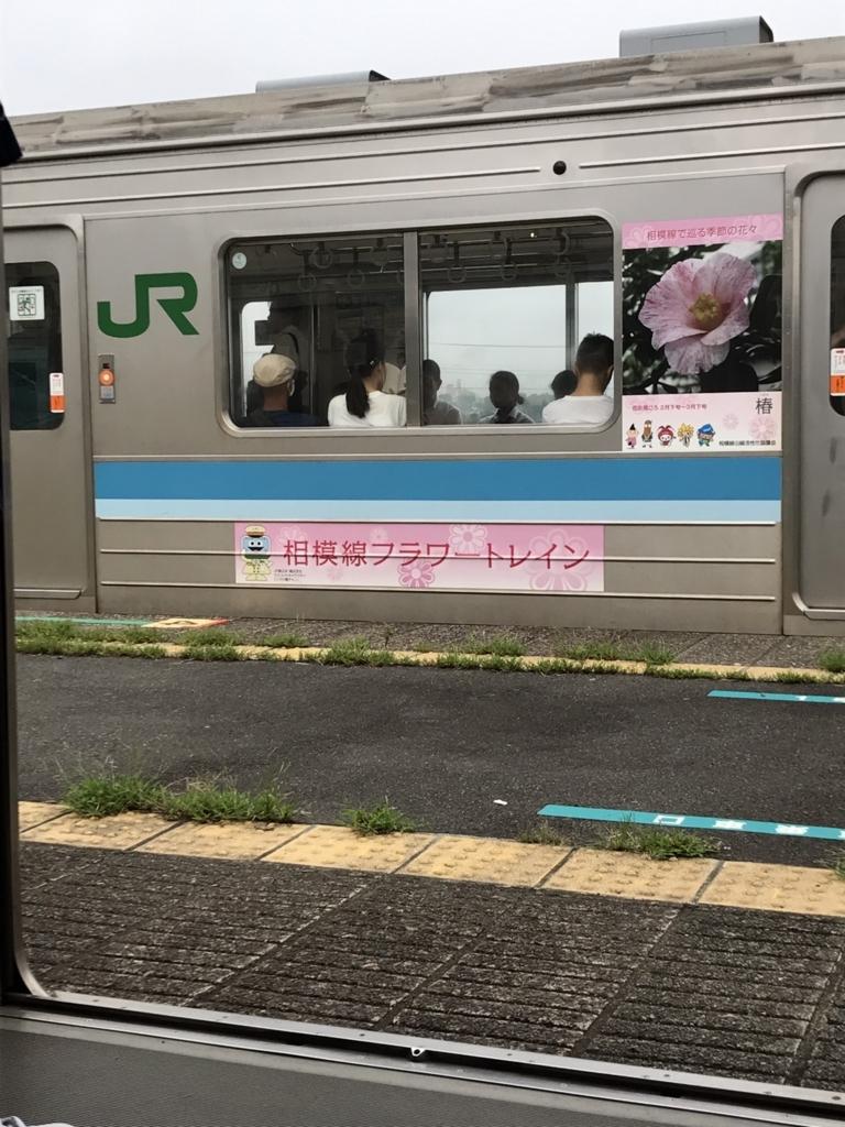 f:id:sashimiko:20170821011435j:plain