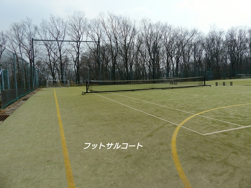 f:id:sashiogisoccer:20190701195444j:plain