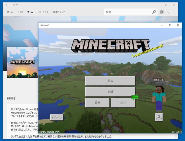 Windows10版