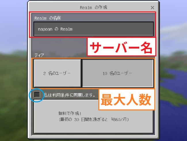 Realmsの設定画面