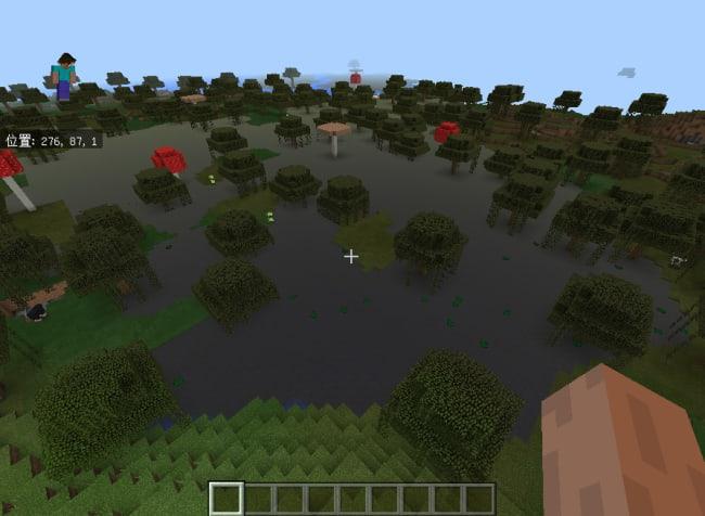 スポーン場所は湿地