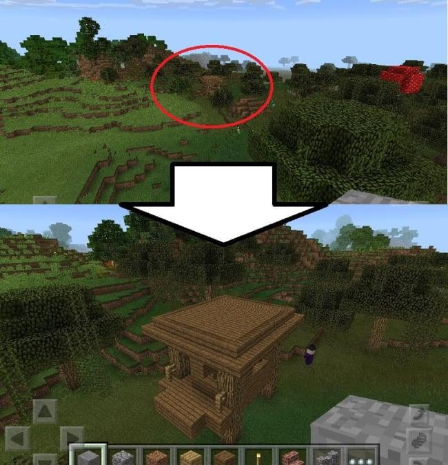 湿地と森の間に魔女の小屋