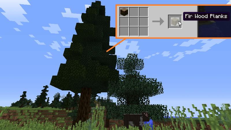 モミの木と木材