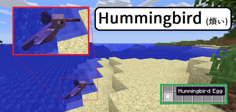 うるさい! Hummingbird