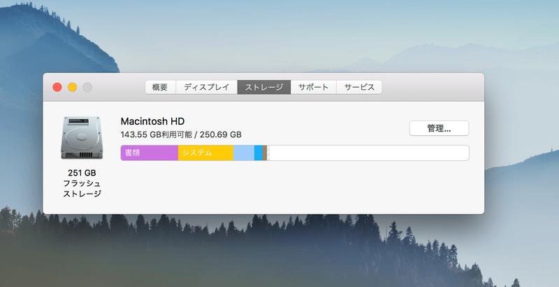 MacBookのストレージ容量の表示