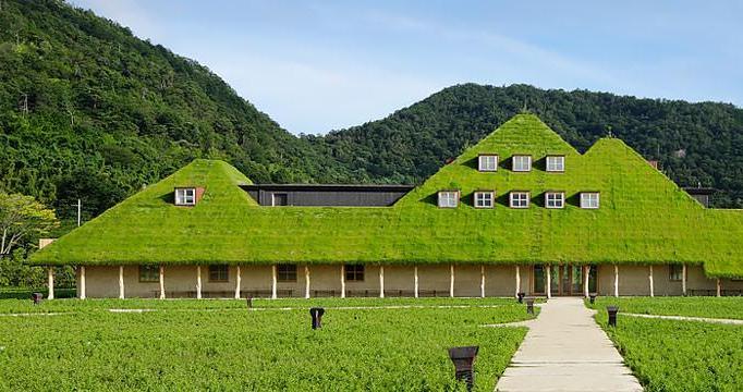 ラコリーナ近江八幡の緑の覆われたショップ