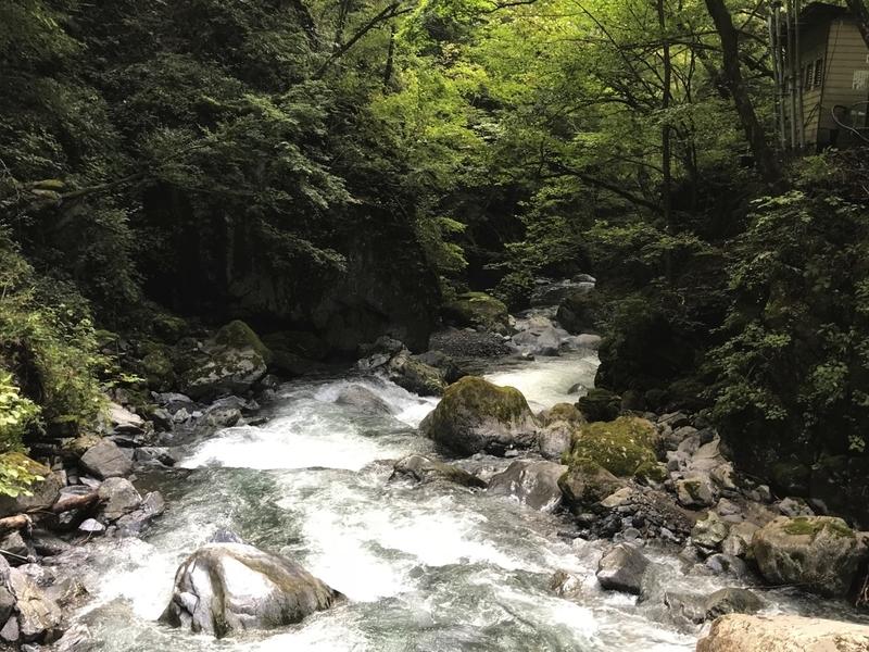 日原鍾乳洞の付近の川の様子