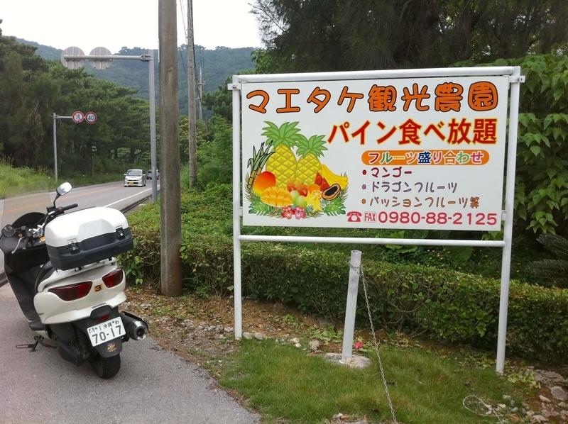 石垣島のマエタケ観光農園