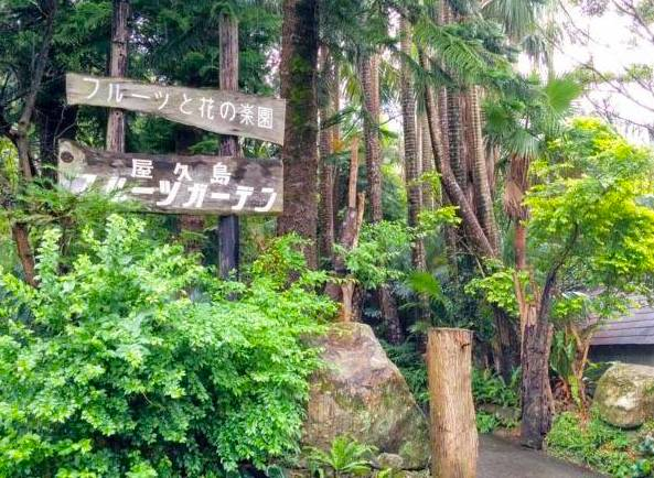 屋久島フルーツガーデンの入り口