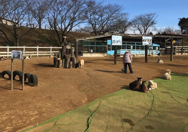 成田ゆめ牧場の園内の様子