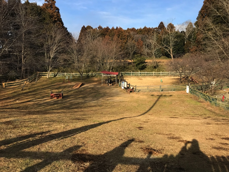 成田ゆめ牧場のドックランコーナー