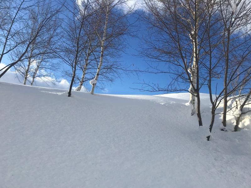 冬の北海道の美しい景色