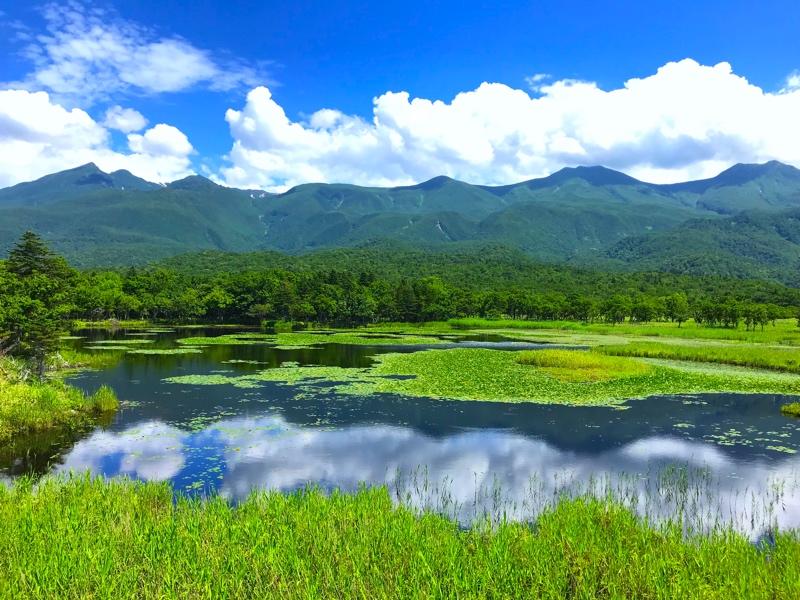 知床を代表する観光地「知床五湖」