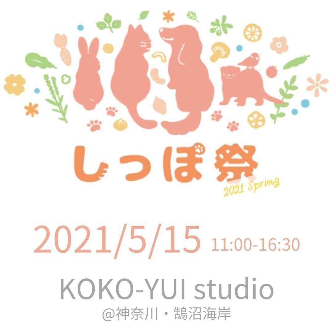 f:id:sasukemimiko:20210503231506j:plain