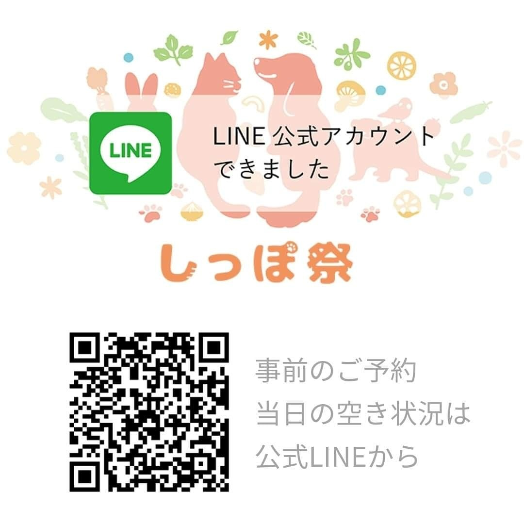 f:id:sasukemimiko:20210503231520j:plain