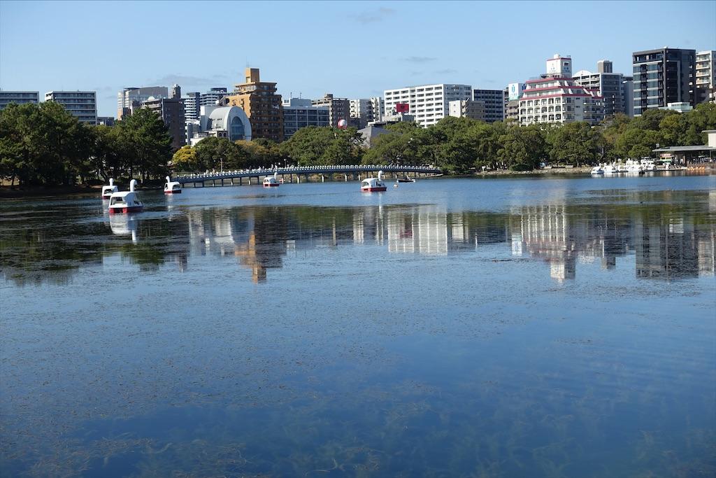 f:id:sasukiti:20201126144050j:image