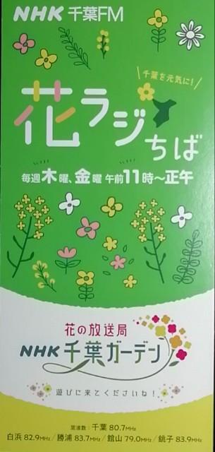f:id:sasukiti:20210218104029j:image