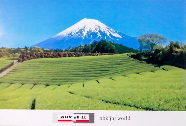 f:id:sasukiti:20210228100754j:image