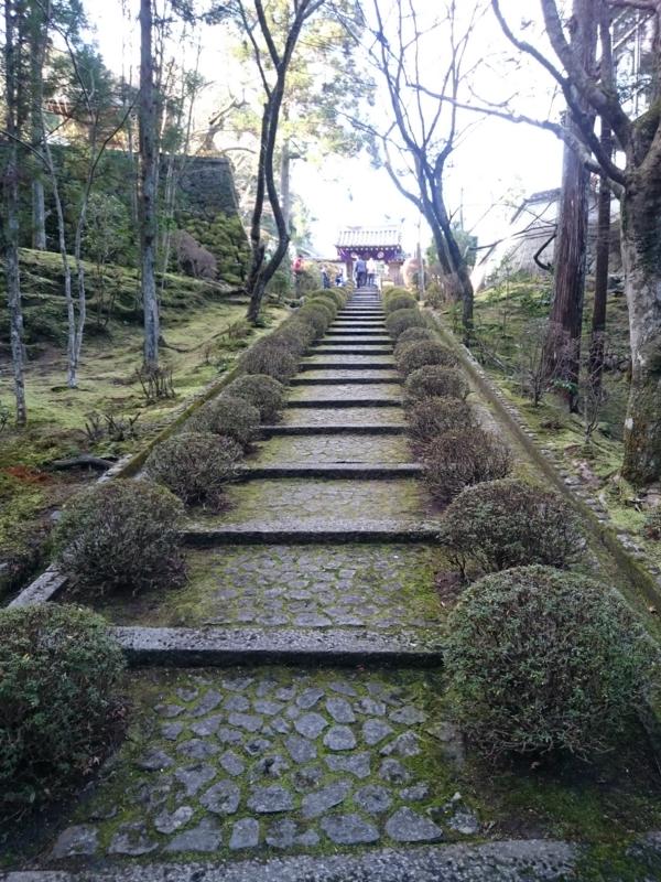 f:id:sasurai-neko:20160105212829j:plain