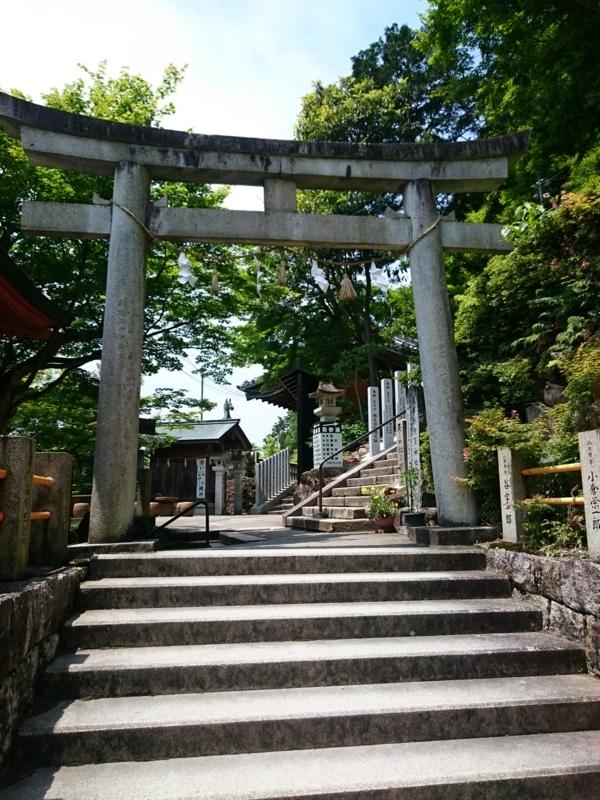 f:id:sasurai-neko:20160528124042j:plain