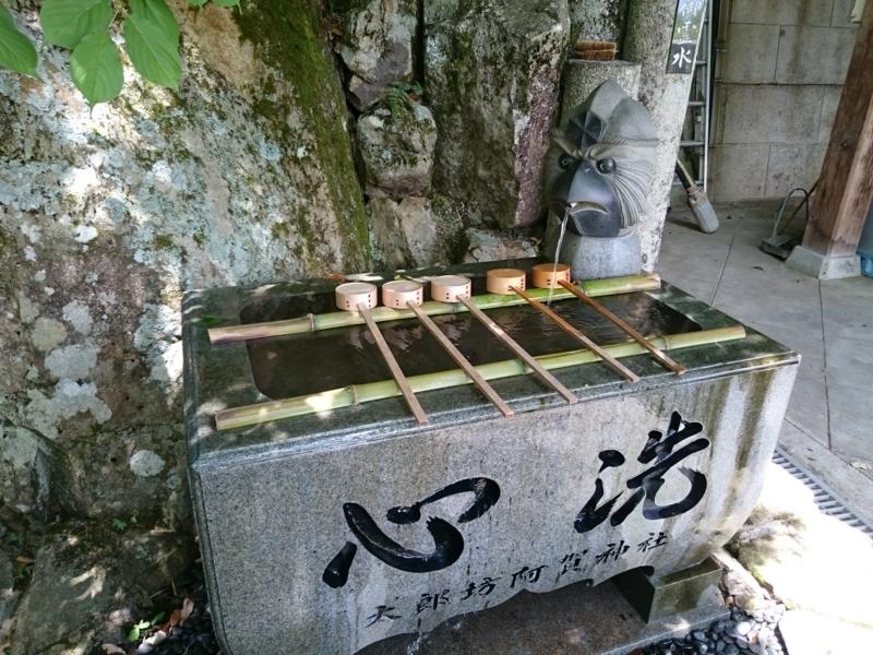 f:id:sasurai-neko:20160528124104j:plain