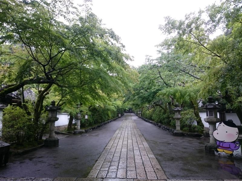 f:id:sasurai-neko:20160701231630j:plain
