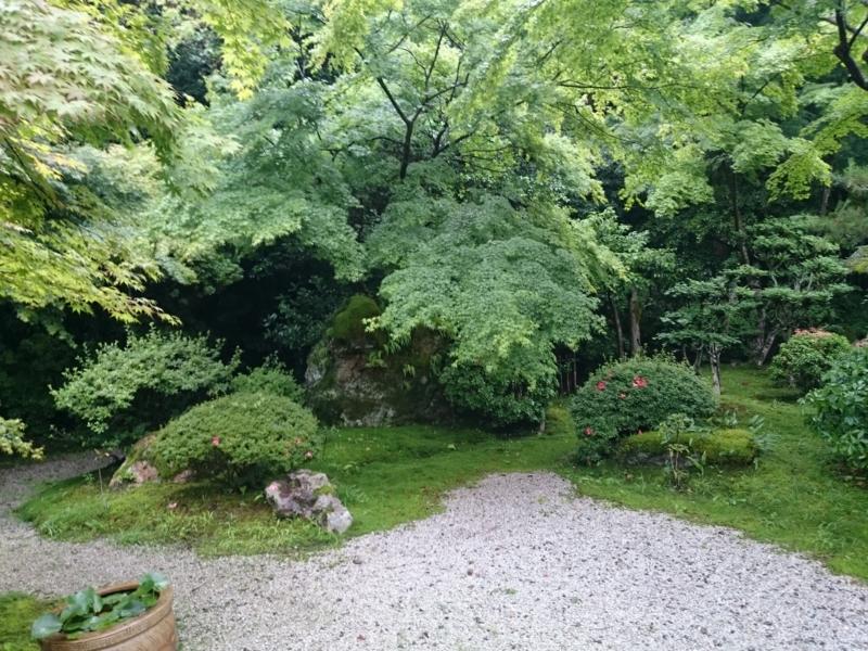 f:id:sasurai-neko:20160701231632j:plain