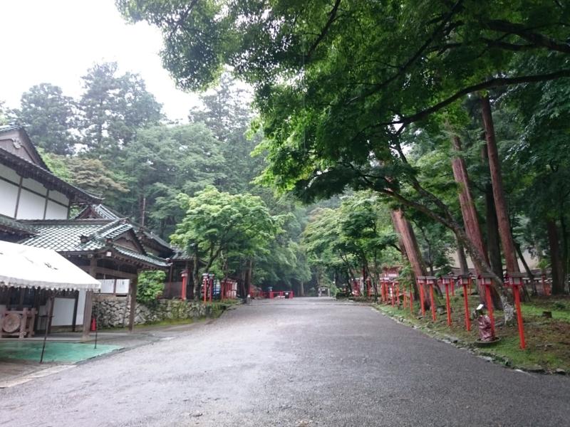 f:id:sasurai-neko:20160701231947j:plain
