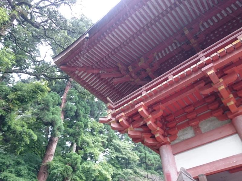 f:id:sasurai-neko:20160701231951j:plain